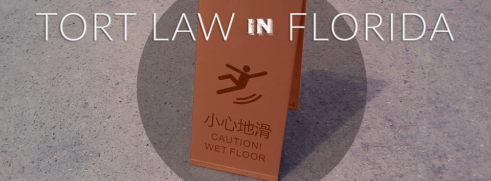 tort law in florida
